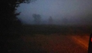 Morning Hunt